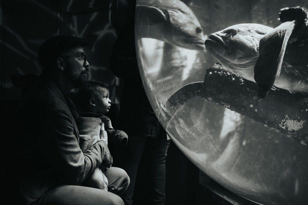Chiara_Doveri_Familienfotografie_Slideshow35